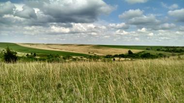 La crisis climática está cambiando las praderas