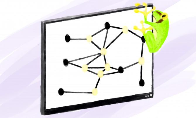 Las ranas resuelven problemas de computación / Noticias / SINC