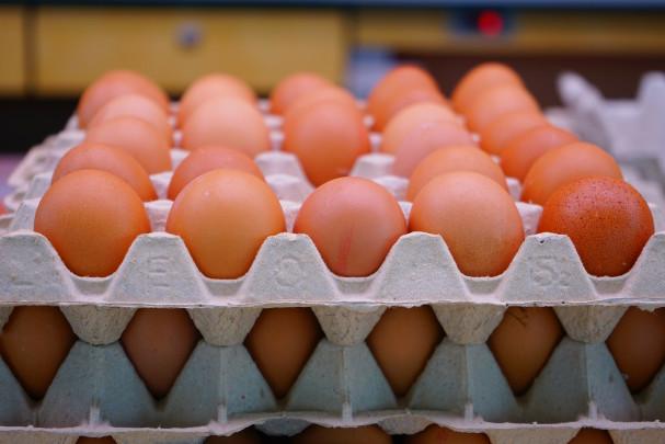 Caja de huevos