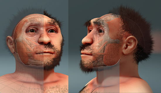 Homo_erectus_pekinensis,_forensic_facial_reconstruction