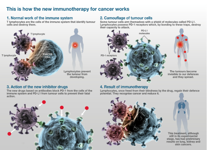 Why Immunotherapy For Cancer Is The Scientific