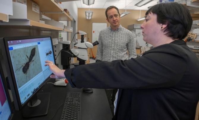Los investigadores Alexis Dodson y Nathan Morehouse