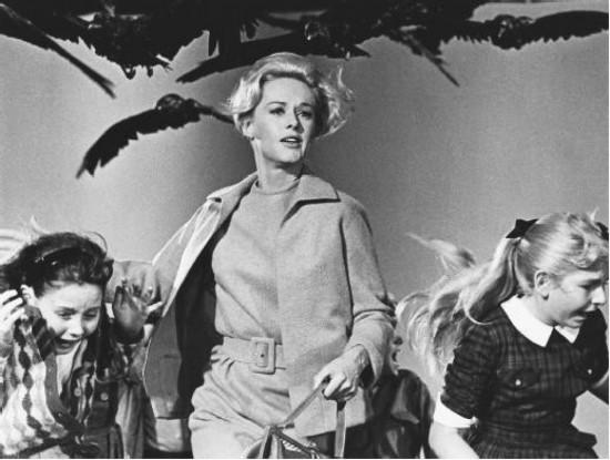 Fotograma de la película Los pájaros