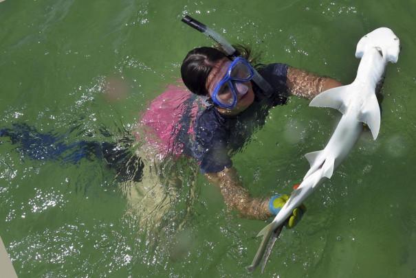 Samantha Leigh con un tiburón