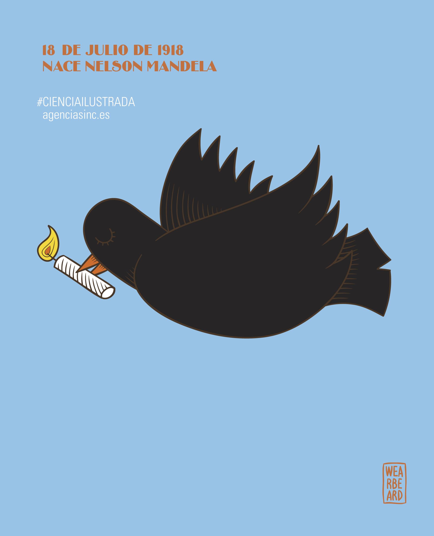 84cfbdddb8 Feliz cumpleaños, Nelson Mandela / Ilustraciones / Multimedia / SINC