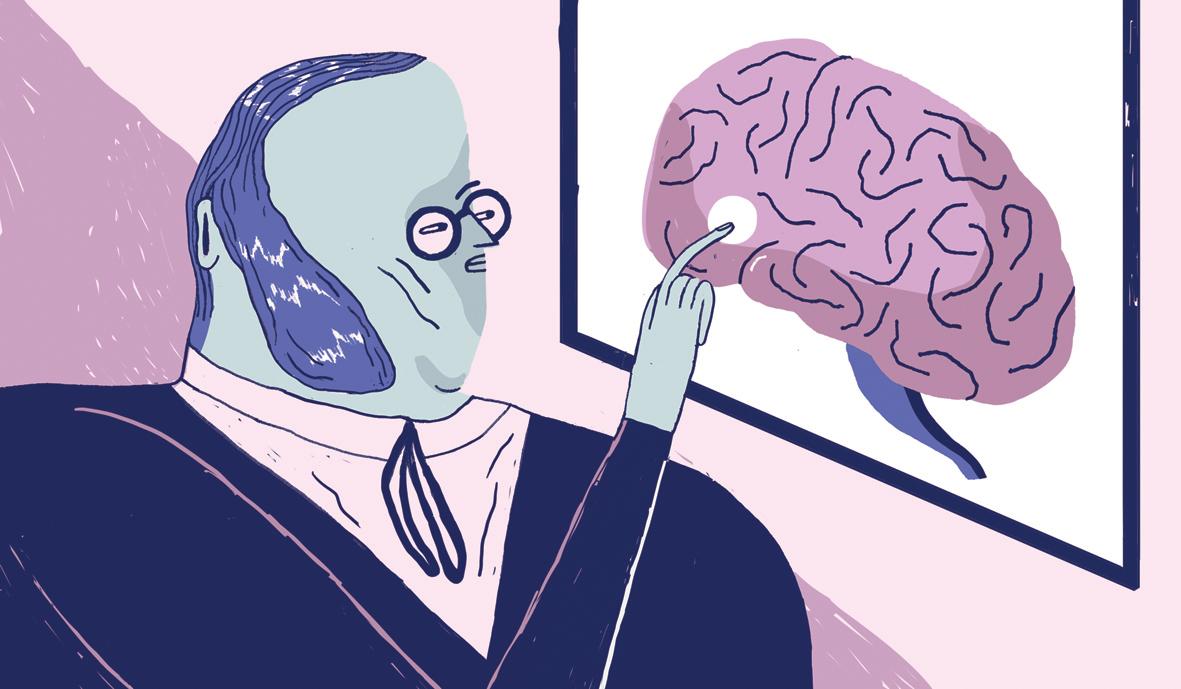 Paul Broca, el descubridor de la región del habla en el cerebro ...