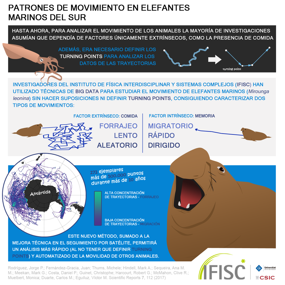 Big data para seguir el movimiento de los elefantes marinos