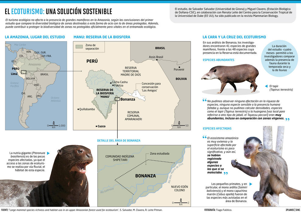 En sus análisis de Bonanza, los investigadores encontraron 41 especies de grandes mamíferos, frente a las 48 especies cuya presencia en la Reserva está documentada.