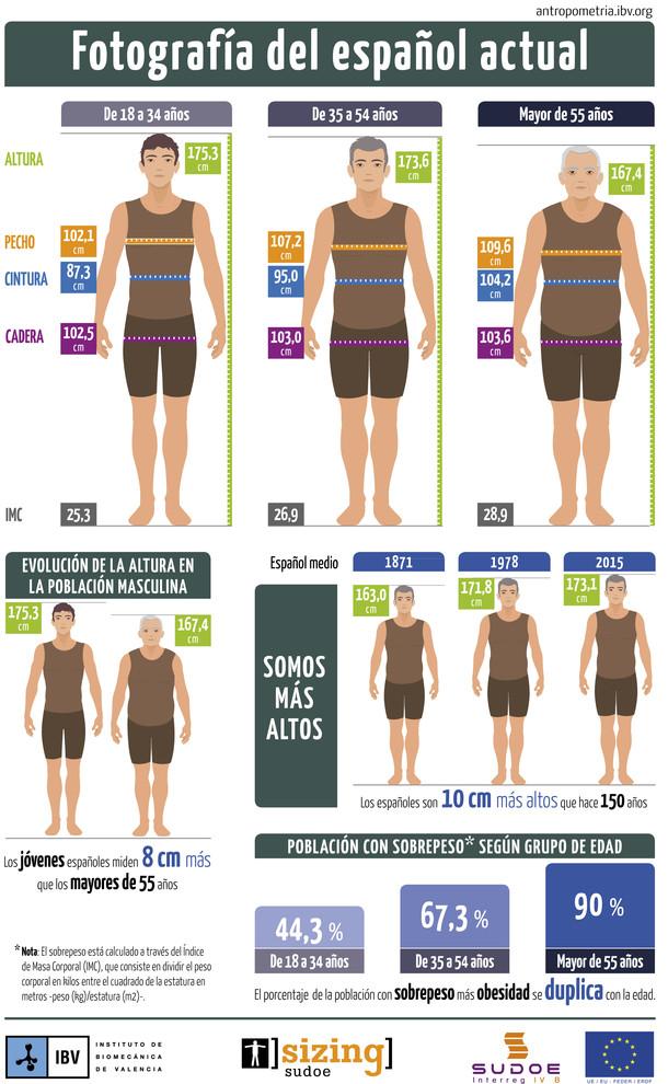 Infografía con las características fisionómicas del español medio. / IBV