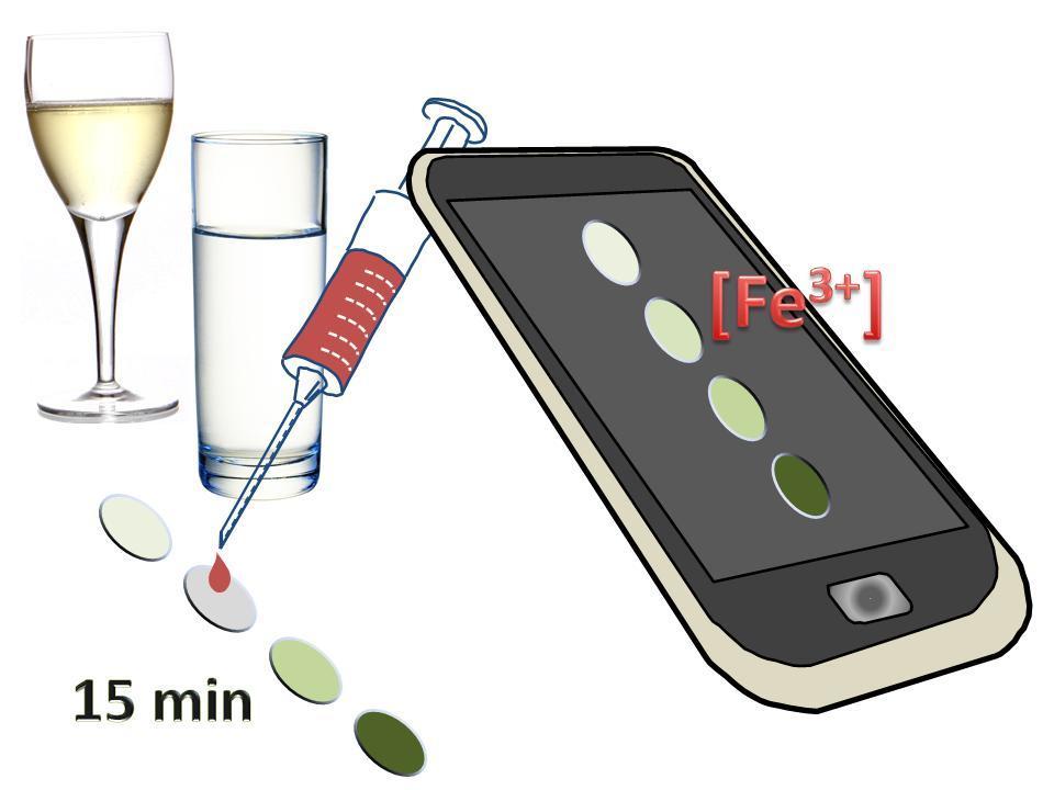 Una gota de fluido sobre el material inteligente informa del hierro en sangre, agua o vino con la ayuda del móvil. / UBU