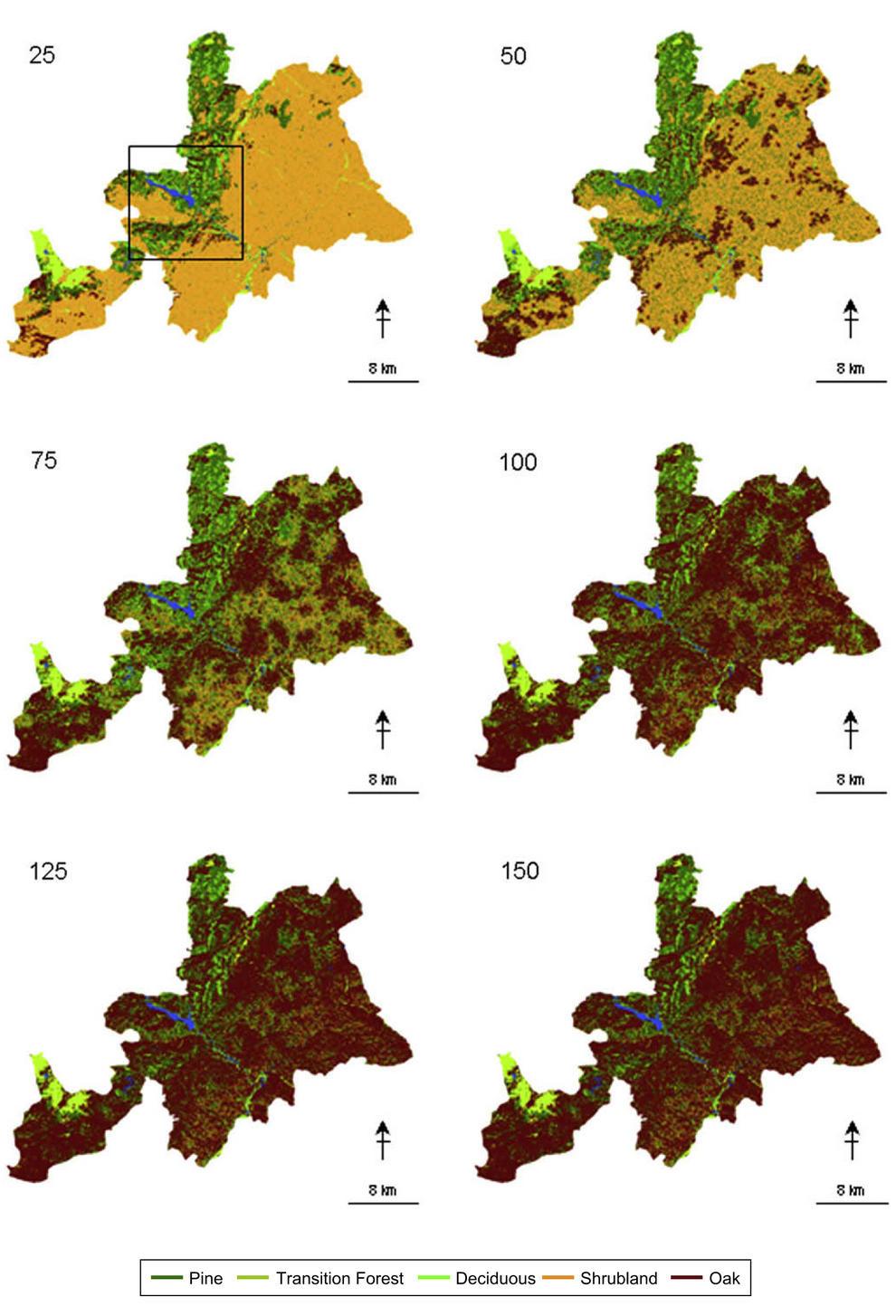 Representación espacial de los cambios en la vegetación a lo largo de varios años si no hubiera incendios ni perturbaciones en un paisaje del sudoeste de Madrid.