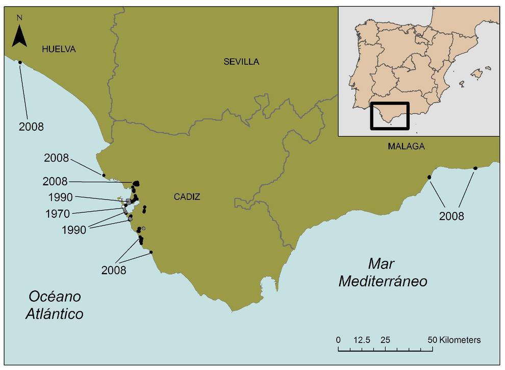 Distribución de la Galenia en España.