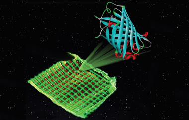 <p>Image of a colour filter with green and red luminescent proteins printed on a microgrid structure. Credit: Katharina Weber</p>