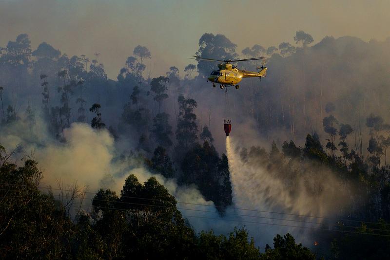 Abogan por utilizar paja para recuperar suelos afectados por incendios forestales