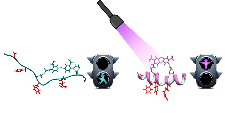 Avance pionero de la nanoingeniería química para diseñar fármacos regulados con luz