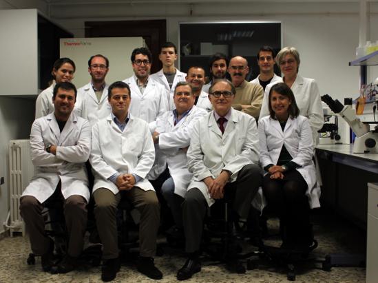 Construyen por primera vez piel artificial a partir de células madre del cordón umbilical