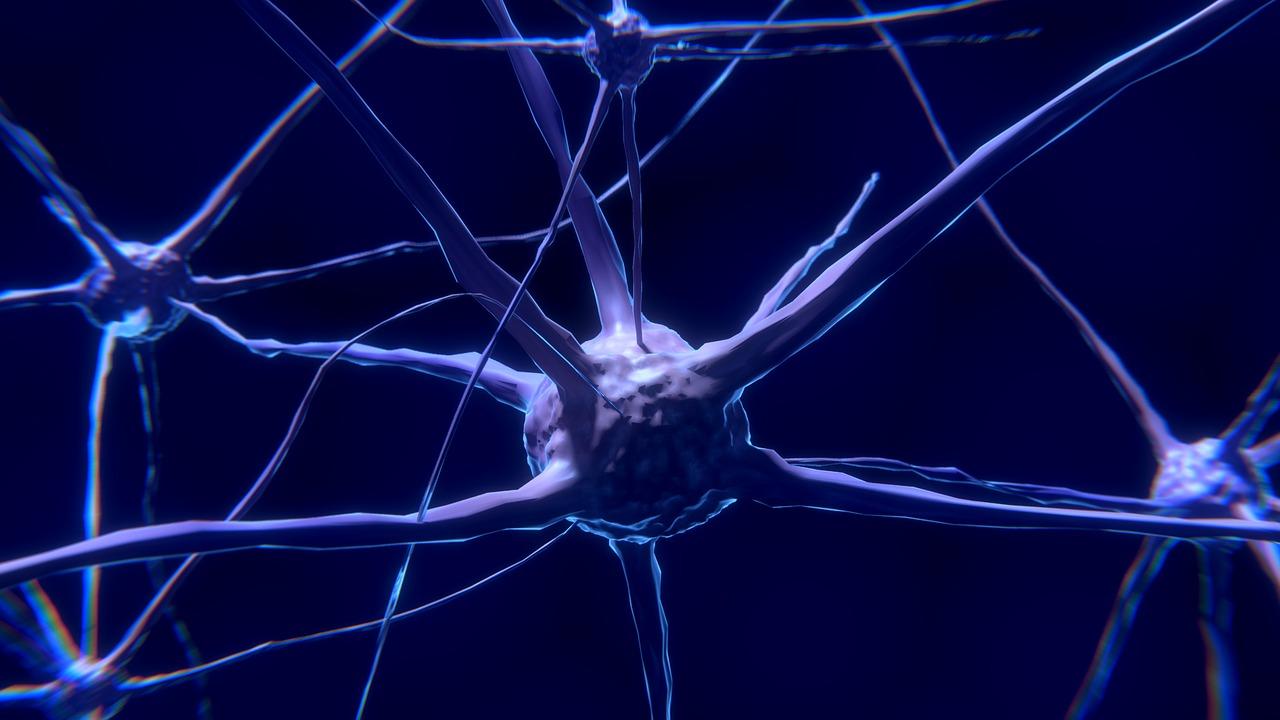 La después de de dolor cirugía nerviosa regeneración