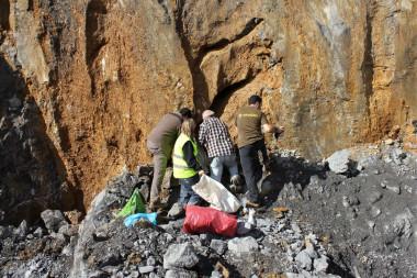 Descubren en Arrasate un yacimiento paleontológico de hace 100.000 años