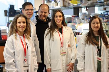 <p>(De izquierda a derecha) Annalaura Mastrangelo, David Sancho, Salvado Iborra, María Martínez-López y Ruth Conde Garrosa / CNIC</p>