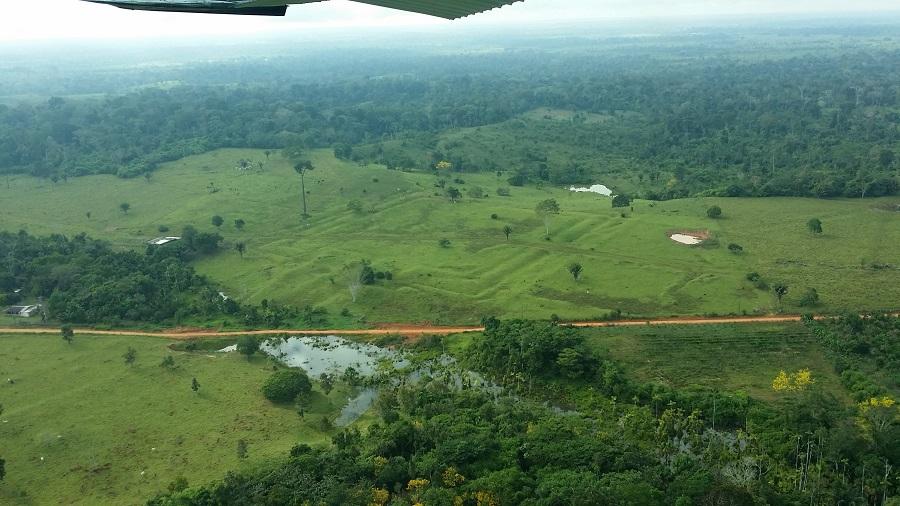El cambio climático impactó en la Amazonia antes de la llegada de los europeos