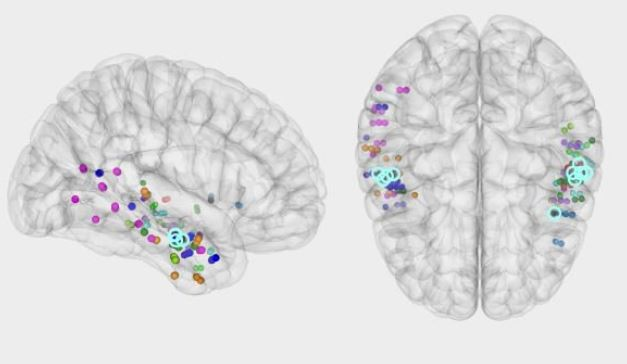 El hipocampo orquesta el proceso cerebral que permite evocar un recuerdo