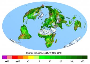 <p>Cambio de la superficie foliar en porcentaje, de 1982 a 2015. Cuanto más verde, más ha aumentado el número de hojas; cuanto más lila, más ha disminuido el número de hojas. / Ranga B. Myneni, Universidad de Boston).</p>
