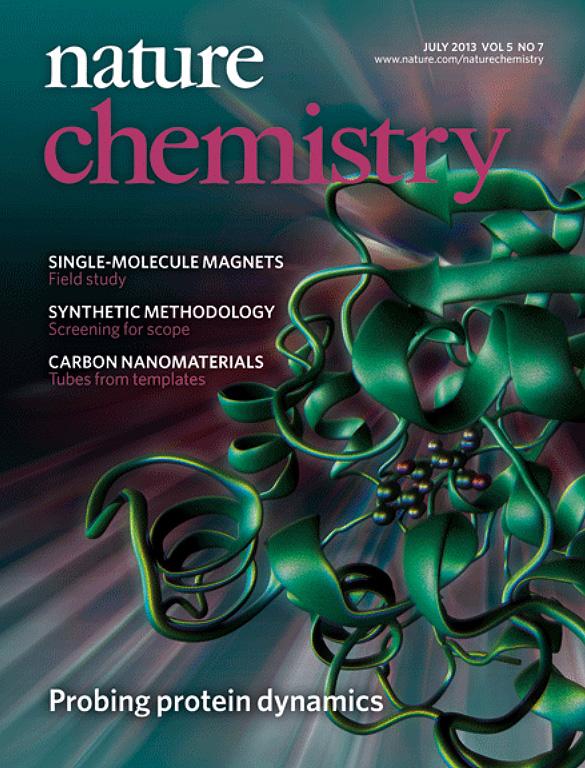 El primer 'mapa' de las enzimas en acción, portada de 'Nature Chemistry'