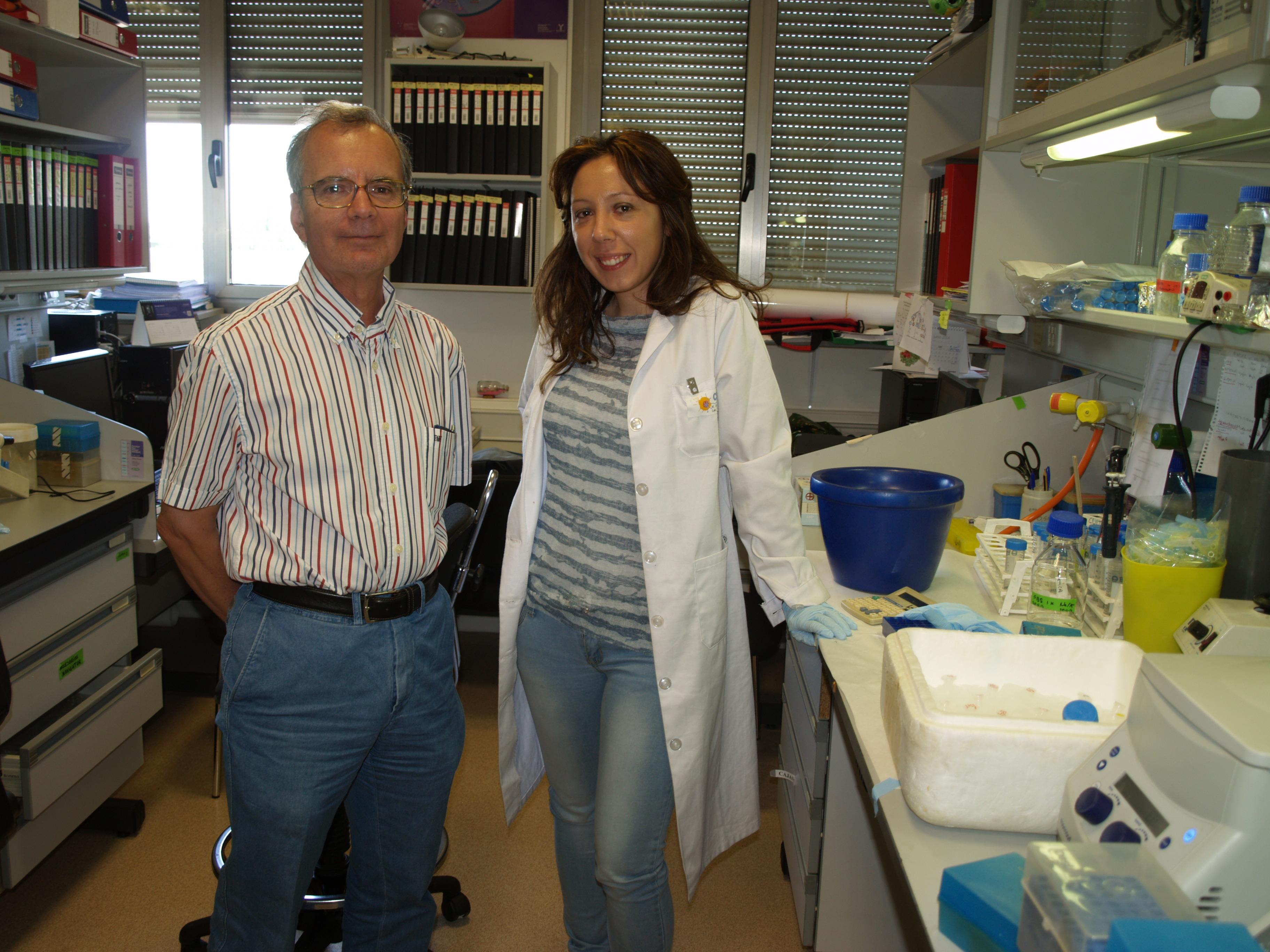 Hallan una proteína clave para mejorar los tratamientos contra el cáncer de mama