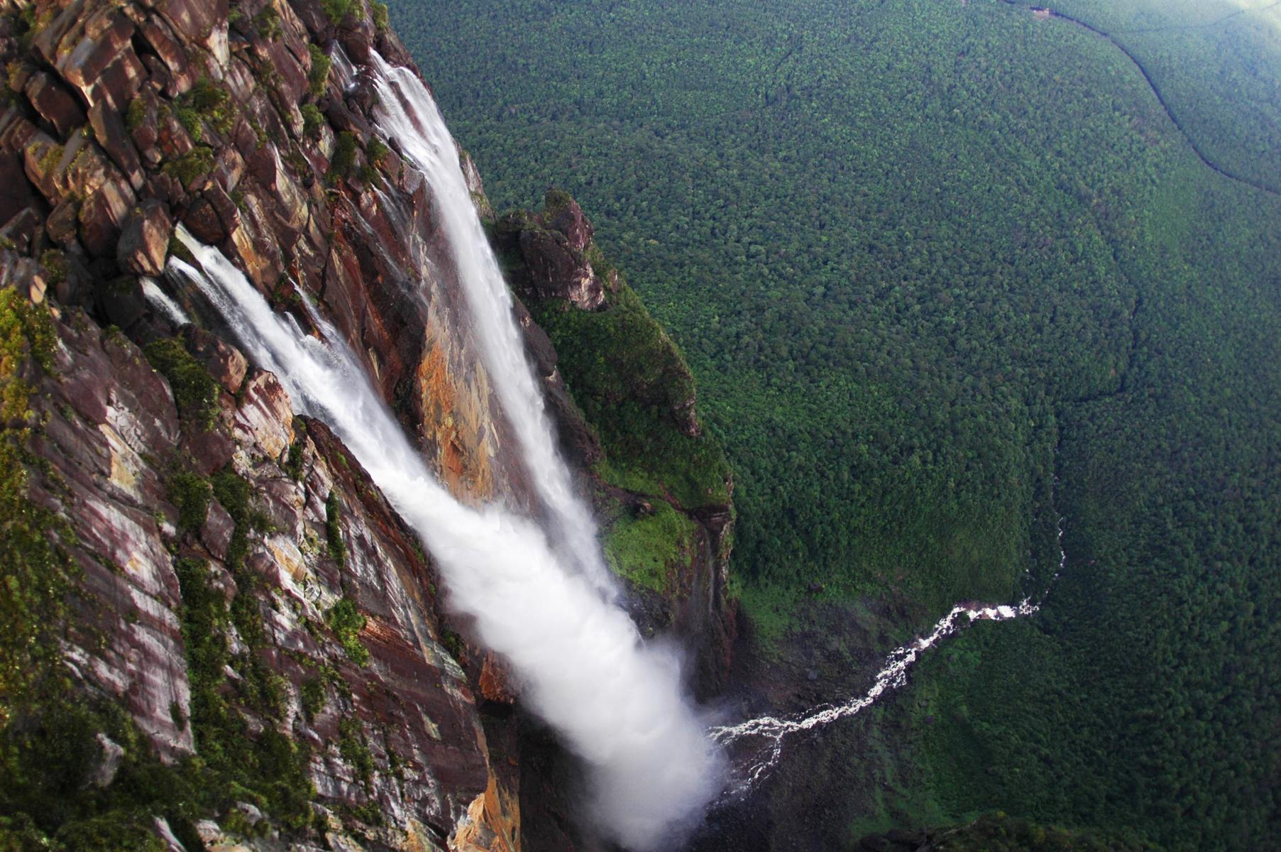 la biodiversidad del amazonas surgi u00f3 con temperaturas m u00e1s altas    noticias    sinc