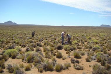 <p>Toma de muestras en Argentina. / Laboratorio de Zonas Áridas y Cambio Global,URJC</p>