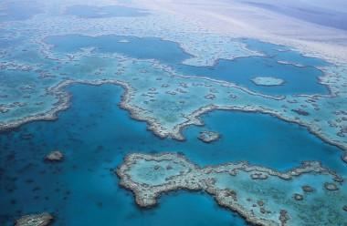 <p>Gran Barrera de Coral australiana / Imagen libre   UGR</p>