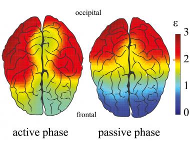 <p>Relación entre las energías de los componentes espectrales (de alta y baja frecuencia) para cada canal del electroencefalograma durante las fases activas y pasivas. / Pisarchik et al.</p>
