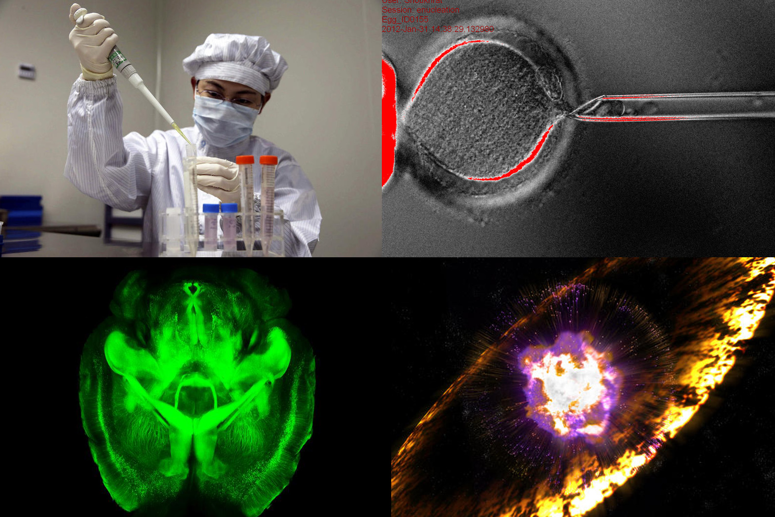 Los hitos de la ciencia de 2013