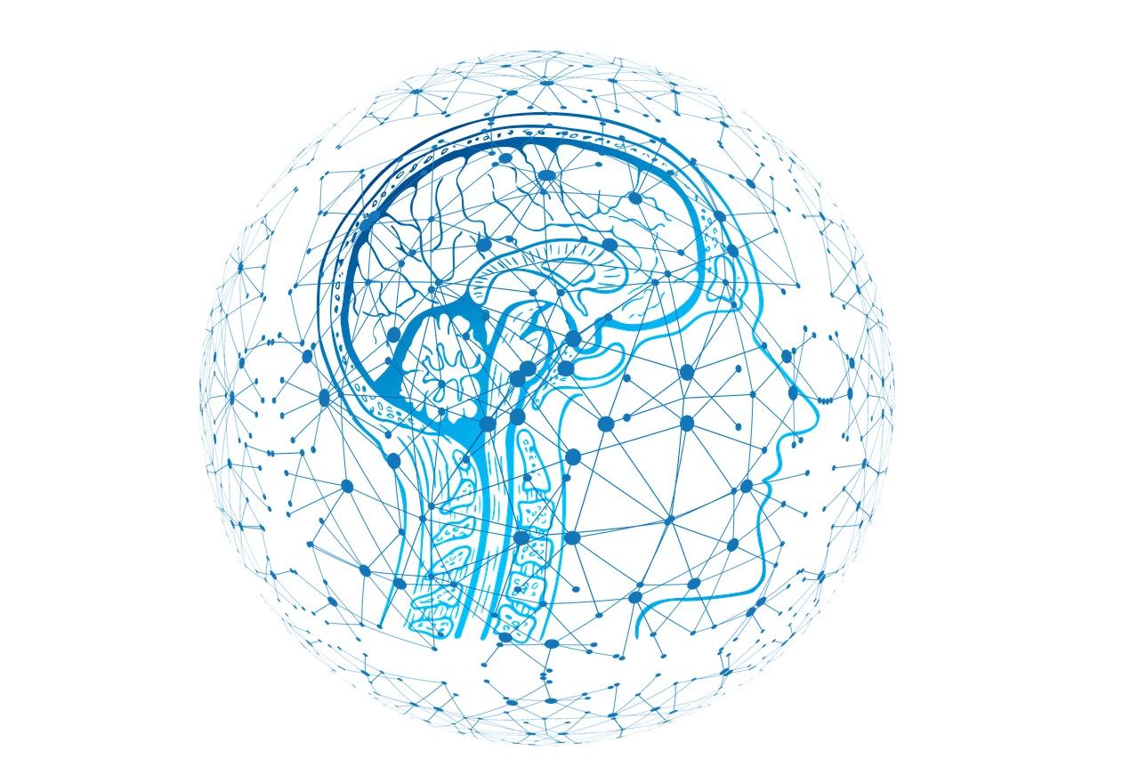Mejorar la autoconciencia aumenta la calidad de vida en el daño cerebral adquirido