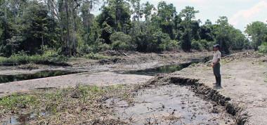 """<p/>Río de Cuninico (Loreto, Perú) un año después del derrame de petróleo del oleoducto Norperuano. Diciembre, 2015 / Cristina O"""" style="""""""" /><span style="""