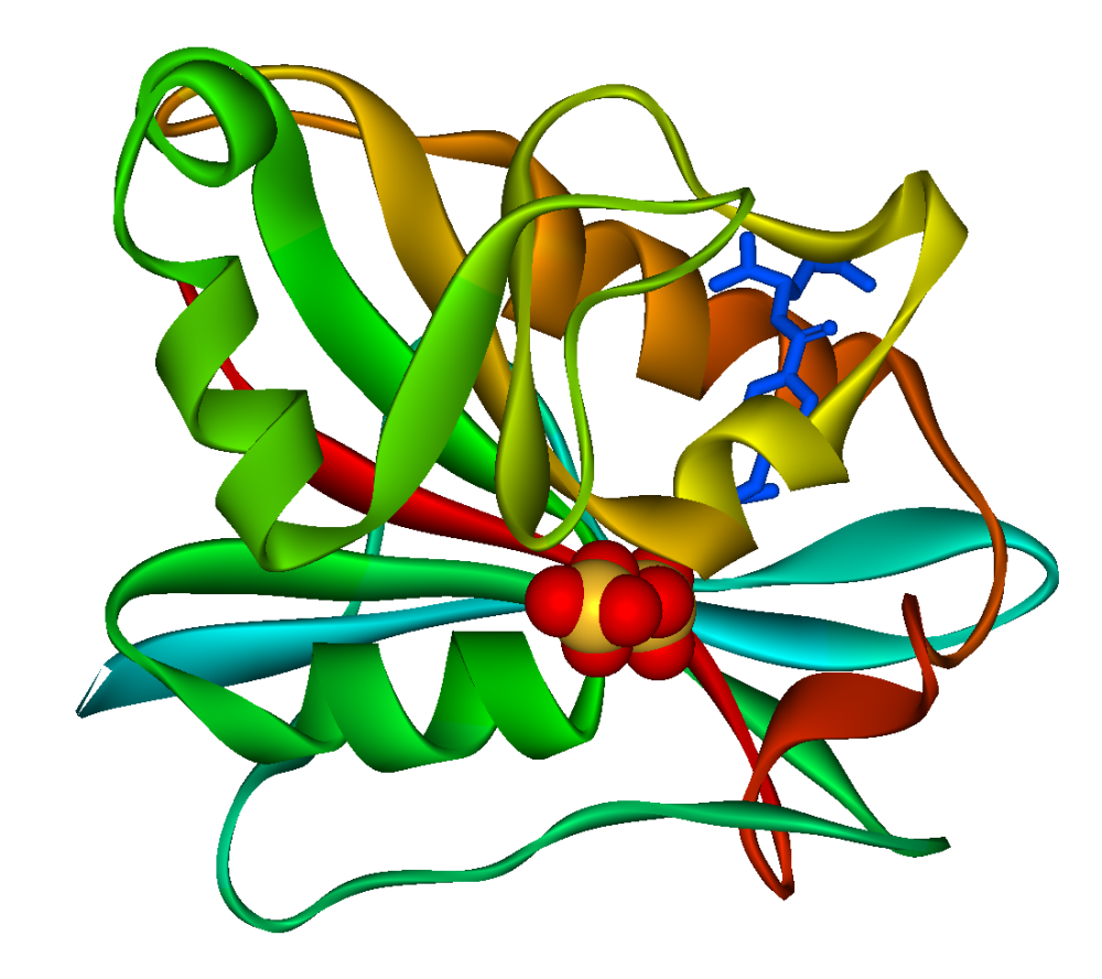 Nanopartículas de hierro abren camino a nuevos antitumorales