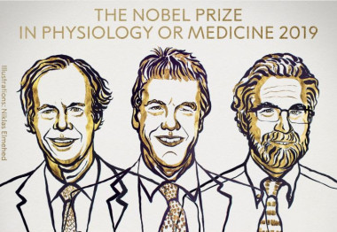 <p>William G. Kaelin Jr, Sir Peter J. Ratcliffe y Gregg L. Semenza, premios Nobel de Fisiología en 2019. / © The Nobel Committee for Physiology or Medicine | Mattias Karlén</p>