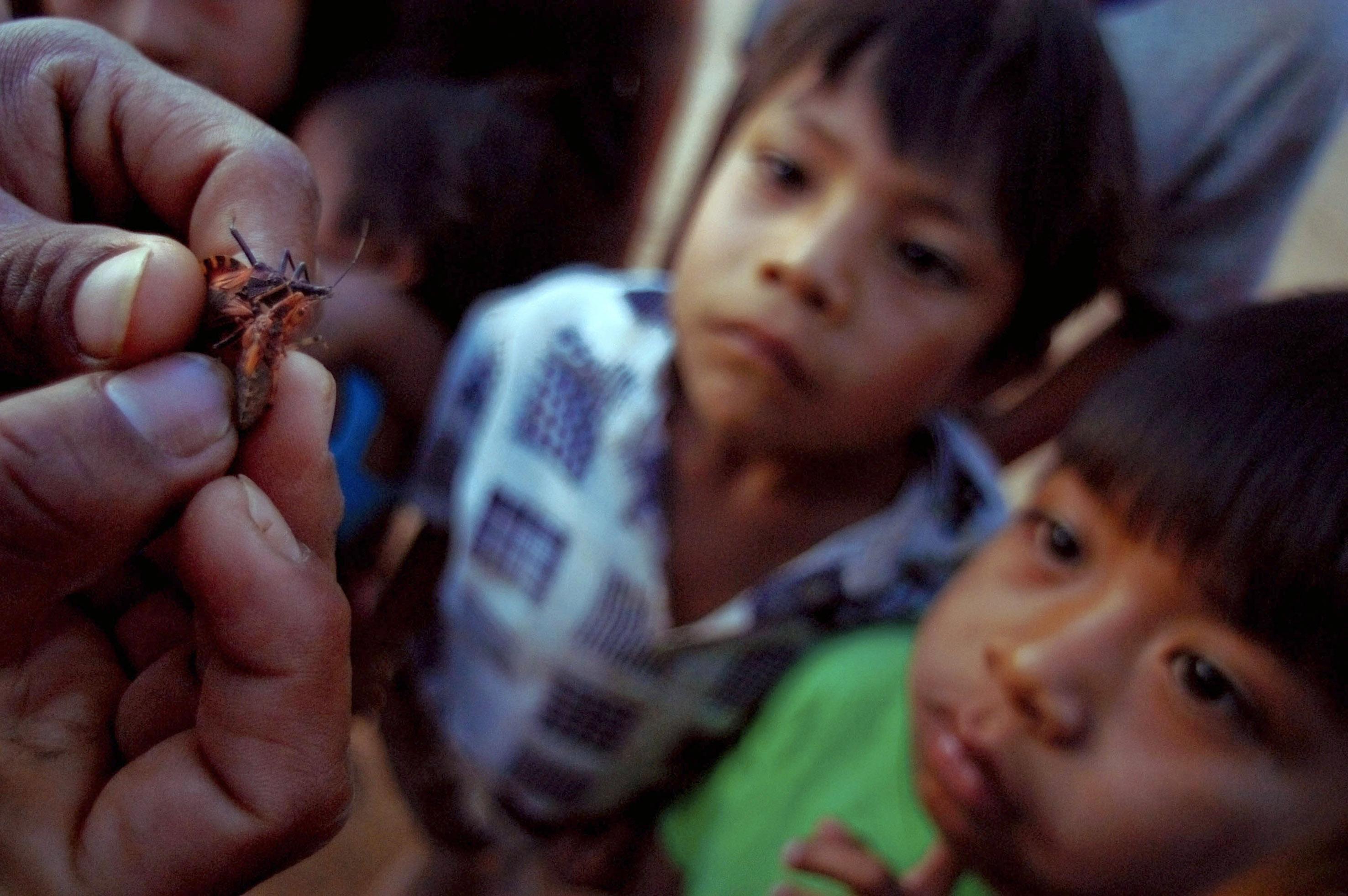 Nueva esperanza contra el mal de Chagas