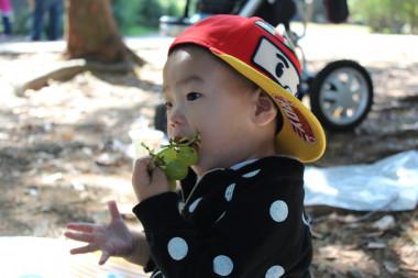 ¿Por qué las niñas/os pequeños no deben comer uvas enteras?