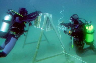 Los investigadores de la Universidad de Cádiz investigan los restos del Fougueux. / UCA