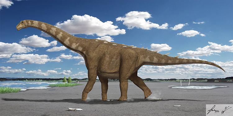 Un nuevo dinosaurio hallado en Cuenca homenajea a Cervantes