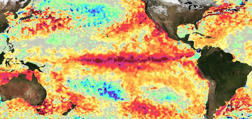 Diferencias de temperatura de la superficie del mar (1 de marzo de 2016). El rojo oscuro indica agua mucho más cálida. / NASA Jet Propulsion Laboratory.