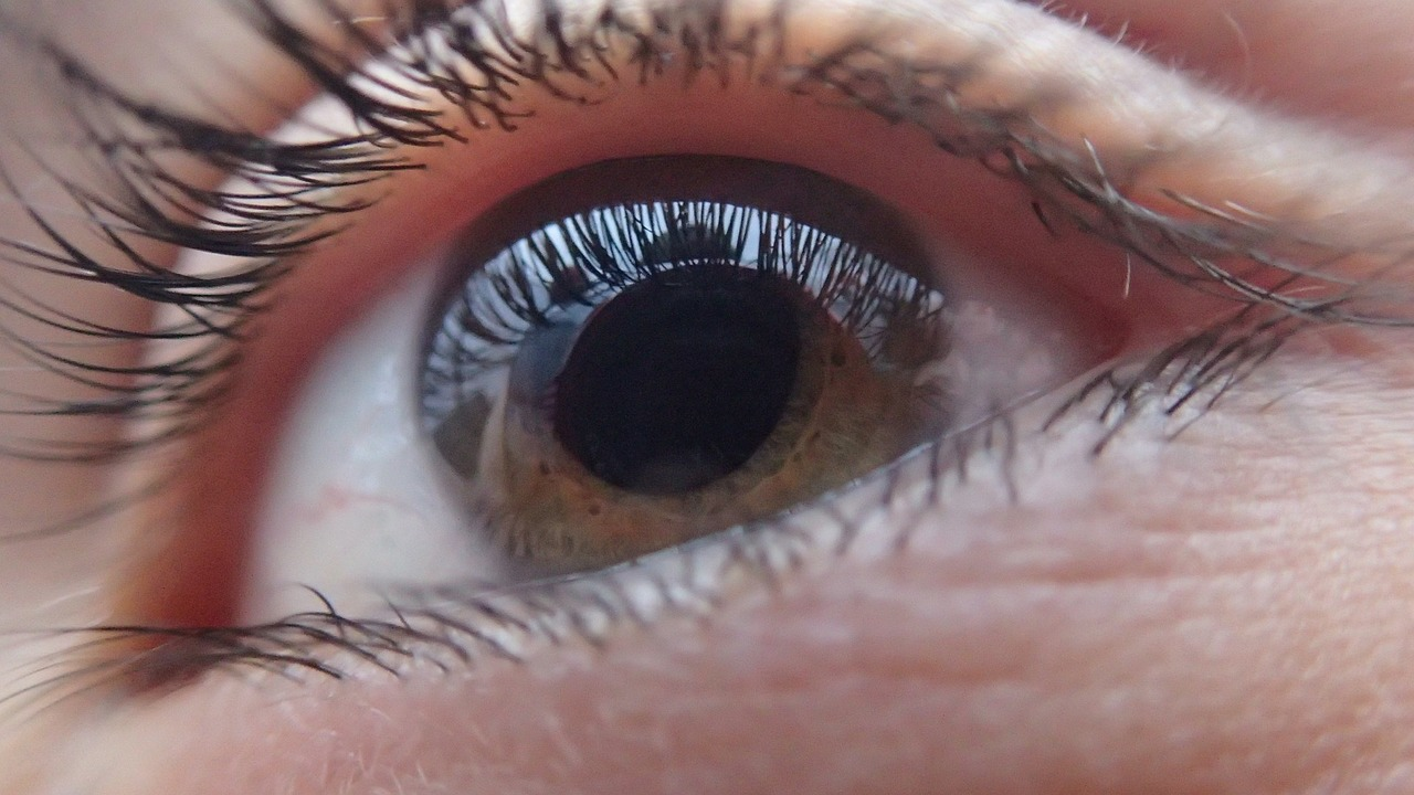 Una nueva lente intraocular se prueba en pacientes con cataratas