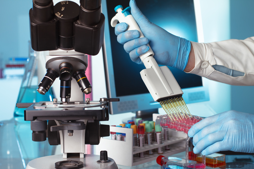 Una variante común del genoma humano protege del asma y la obesidad