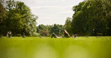 <p>Estudios anteriores señalan que las personas que viven en áreas con más espacios verdes tienen undeclive físico más lento. / Mihaly Koles on Unsplash</p>