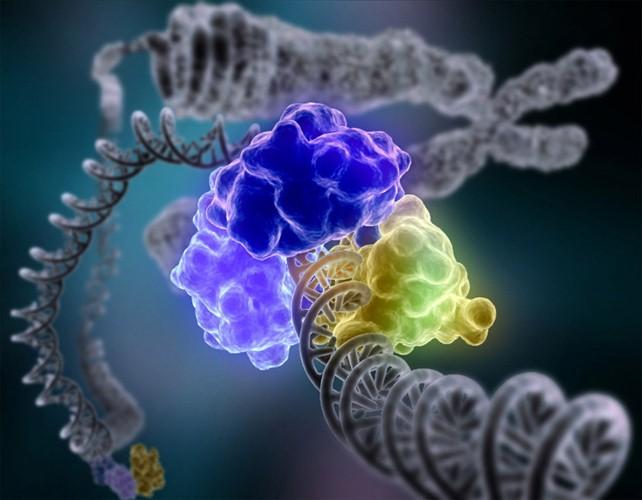 ¿De verdad quiere saber todo sobre sus genes?